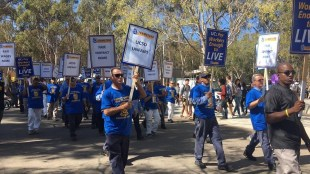 Skilled trade workers strike on Library Walk at UCSD. (Sylvia O/The Triton)