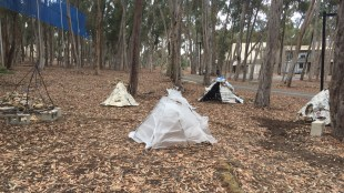 An anonymous artist placed an installation in the woods next to the bike paths on June 7 mocking the current state of on-campus housing and campus expansion plans. Cindy Zhan / The Triton