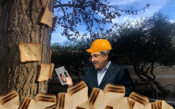 Photo of UC San Diego Chancellor Khosla photoshopped wearing a hat near a tree with bread stapled on it