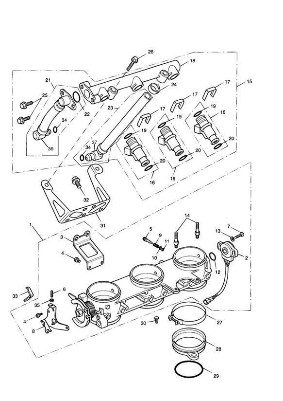 2002 Triumph Sprint O ring, injector, lower. Fuel, rail