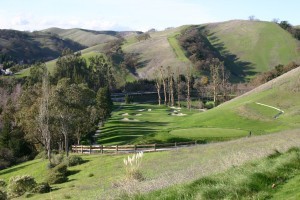 The Lakes Course