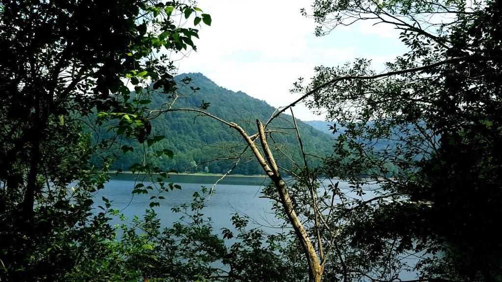 Lacul Vidraru - panorama