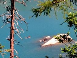 switzerland-oeschinen-lake-swimming-with-dog