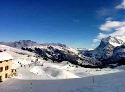 switzerland-grindelwald-fields-of-snow