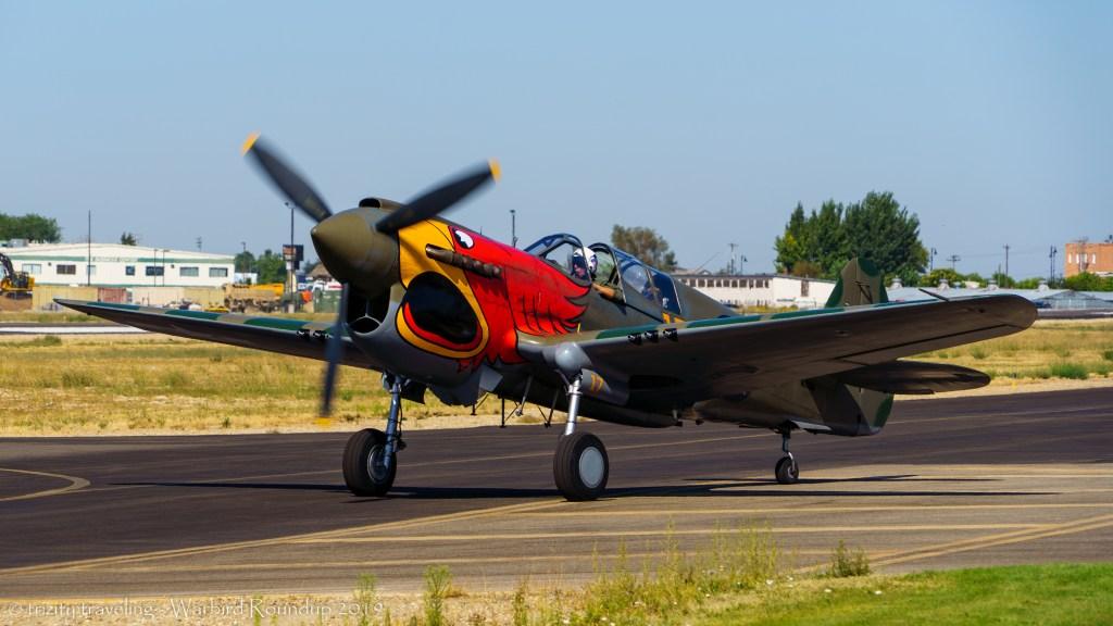 P-40 parrot head warbird roundup 2019 warhawk air museum