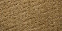 Carpet Restretching 101 With Ante Carpet Installation Co ...