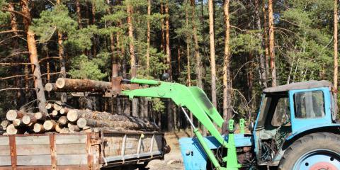 Selling Lumber