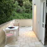 Terrace behind the house