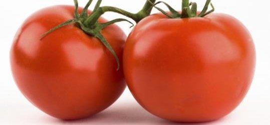 Tomato Genome Decoded