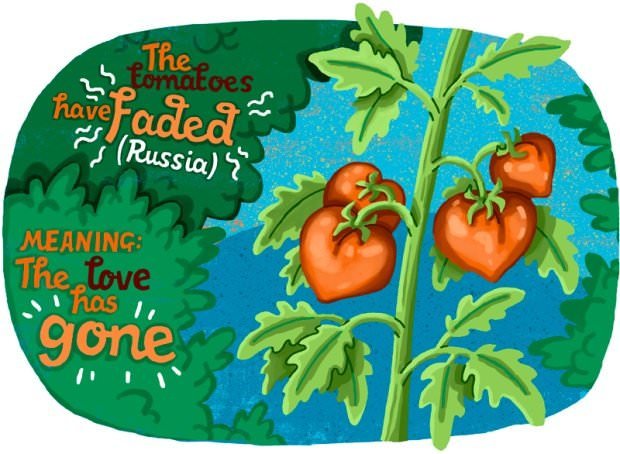 Translating Love With Idioms From Different Languages