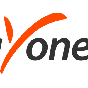 What is Payoneer 1