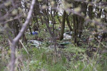 Śmieci skrywane przez krzaki na cmentarzu