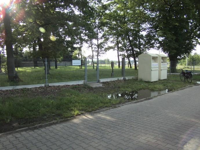 P1000313