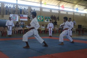 Fenix Karate Team