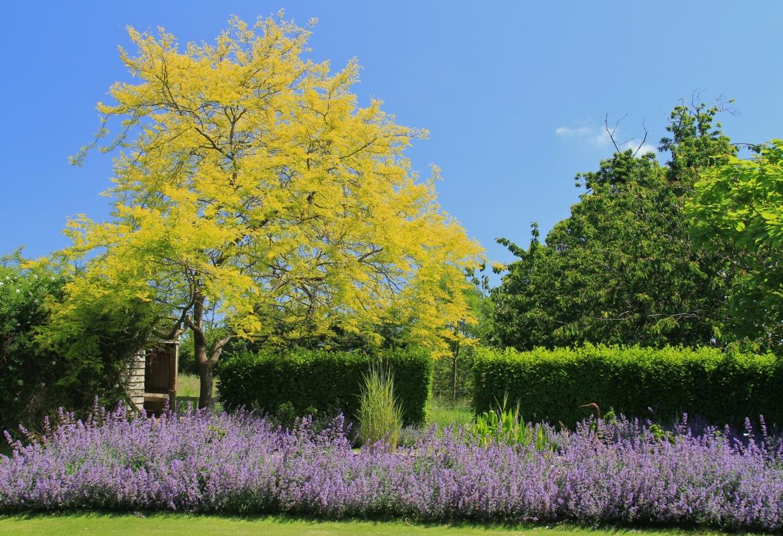Les 5 Jardins Du Troezel Vras Entre Trguier Et Paimpol