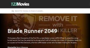 How to remove 123Movies Search