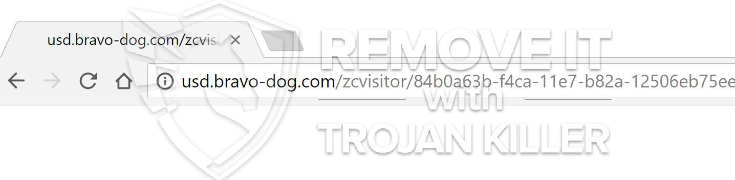 remove Usd.bravo-dog.com virus