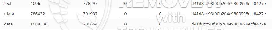 remove vsupport.exe virus