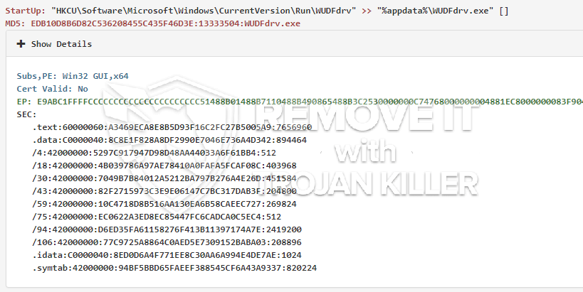 remove WUDFdrv.exe virus