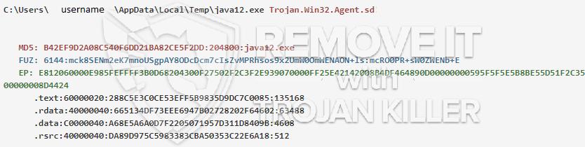 remove java12.exe virus
