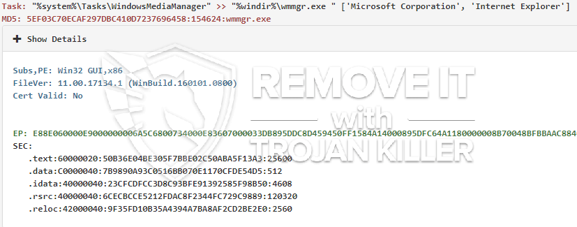 remove wmmgr.exe virus