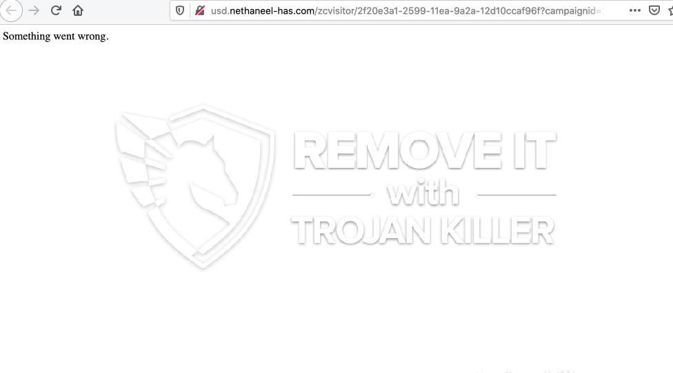 remove Usd.nethaneel-has.com virus