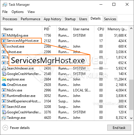 What is ServicesMgrHost.exe?