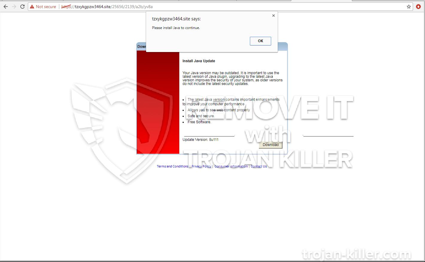 Tzxykgpzw3464.site virus