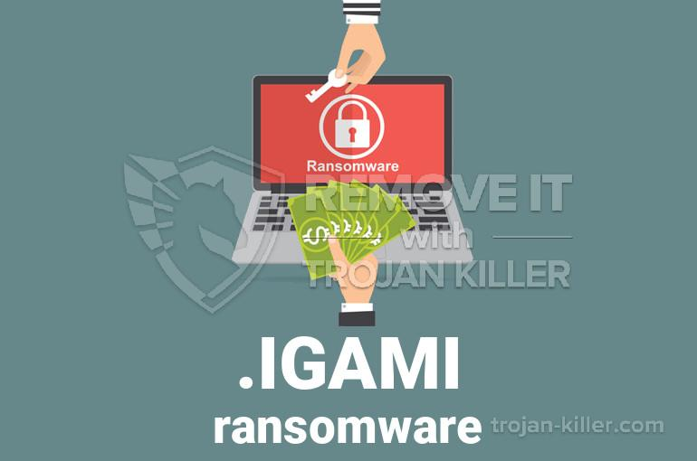 .IGAMI chrome extension