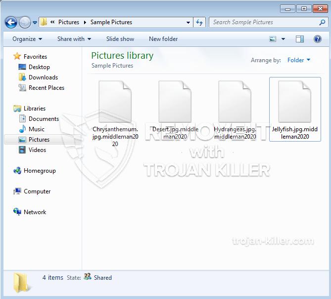 .MIDDLEMAN2020 ransomware virus