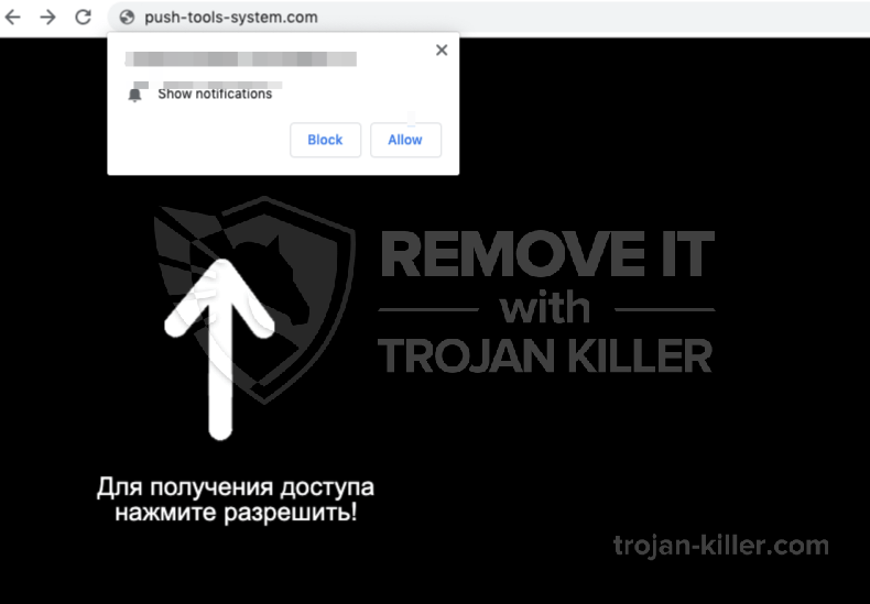 Push-tools-system.com virus