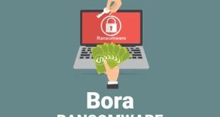 Fjern Bora Virus Ransomware (+File Recovery)