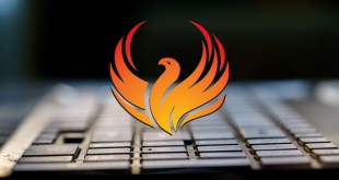Phoenix disables 80 security products