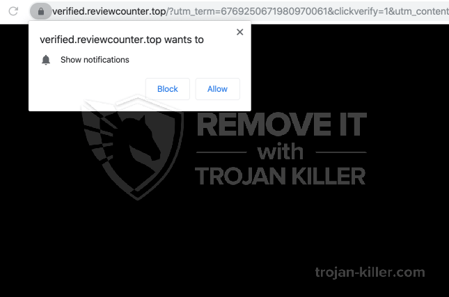 Reviewcounter.top virus
