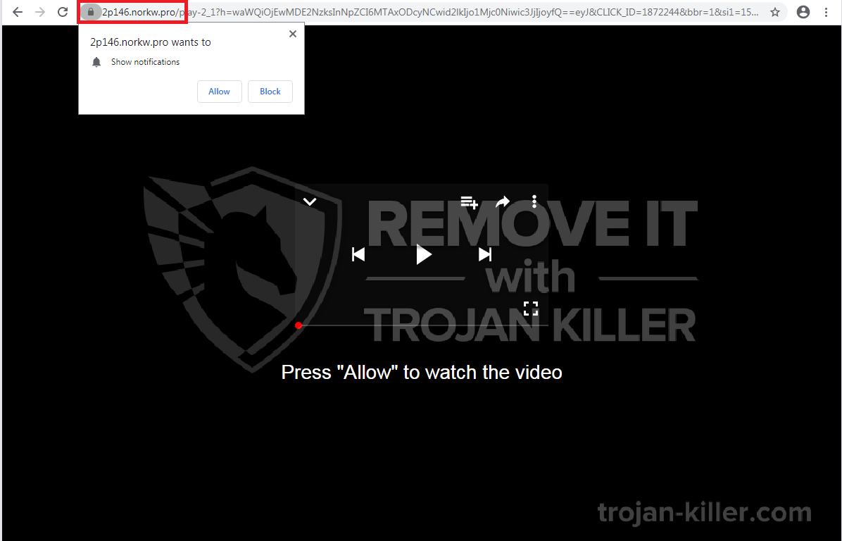 Norkw.pro virus