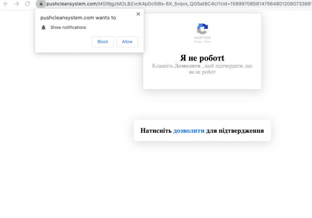 Pushcleansystem.com