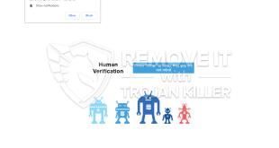 Tec-smartphone.com 알림 표시를 제거하는 방법