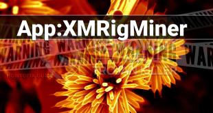 How to remove App:XMRigMiner virus?