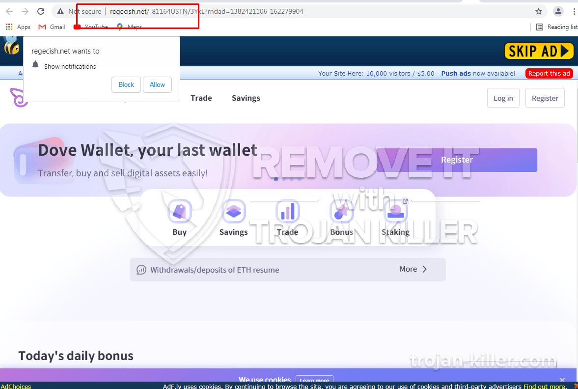 Regecish.net virus