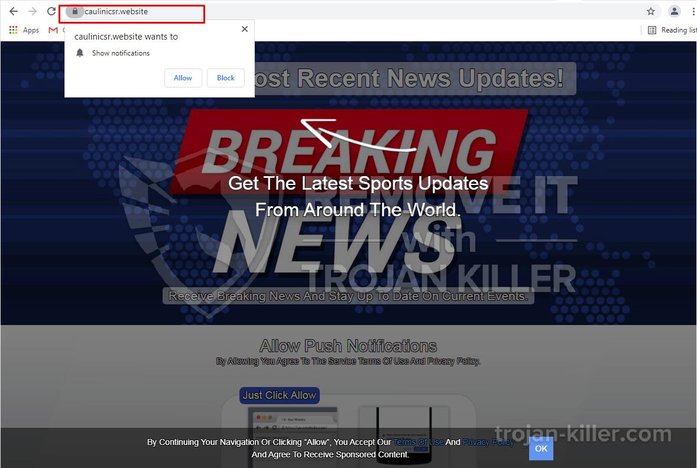 Caulinicsr.website virus