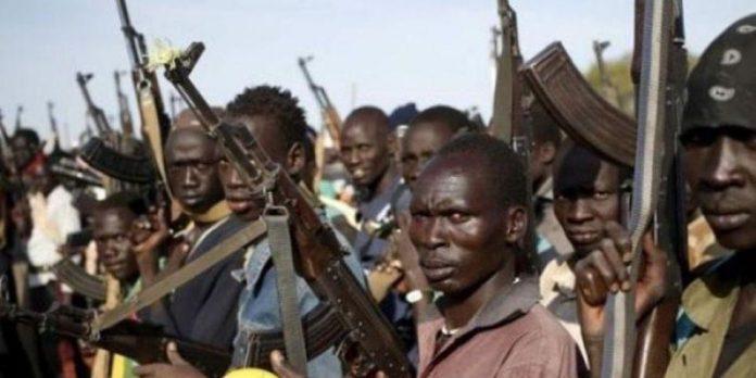 Zamfara Students Regain Freedom From Armed Fulani Terrorists