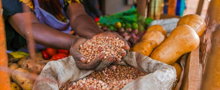 African Countries Commit To Double Agricultural Productivity As Development Banks And Partners Pledge Over $17bn To Increase Food Security