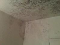 How Do I Get Rid Of Mildew On Bathroom Ceiling