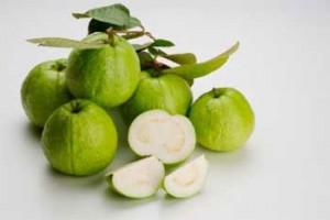 Cây ăn trái