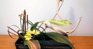 Ikebana-nghe-thuat-cam-hoa-nhat-ban