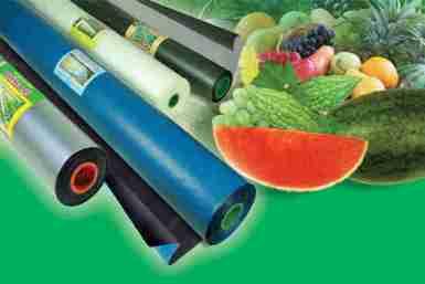 cách dùng màng phủ trồng rau