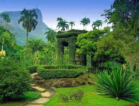 Những vườn thực vật đẹp