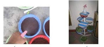 Cách tưới nước cho rau trồng tại nhà - tuoi nuoc bang binh phun