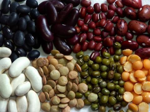 các loại hạt đậu