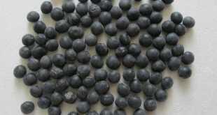 đậu nành đen giúp giảm cân hiệu quả